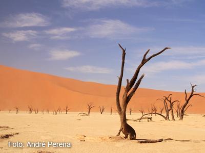 namibia (7)
