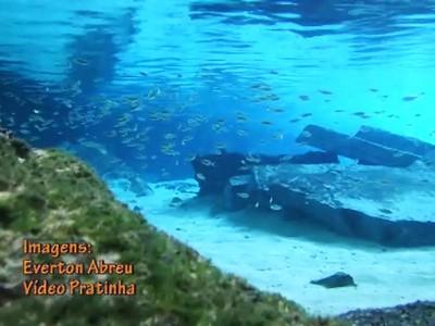 Mergulho no Pratinha